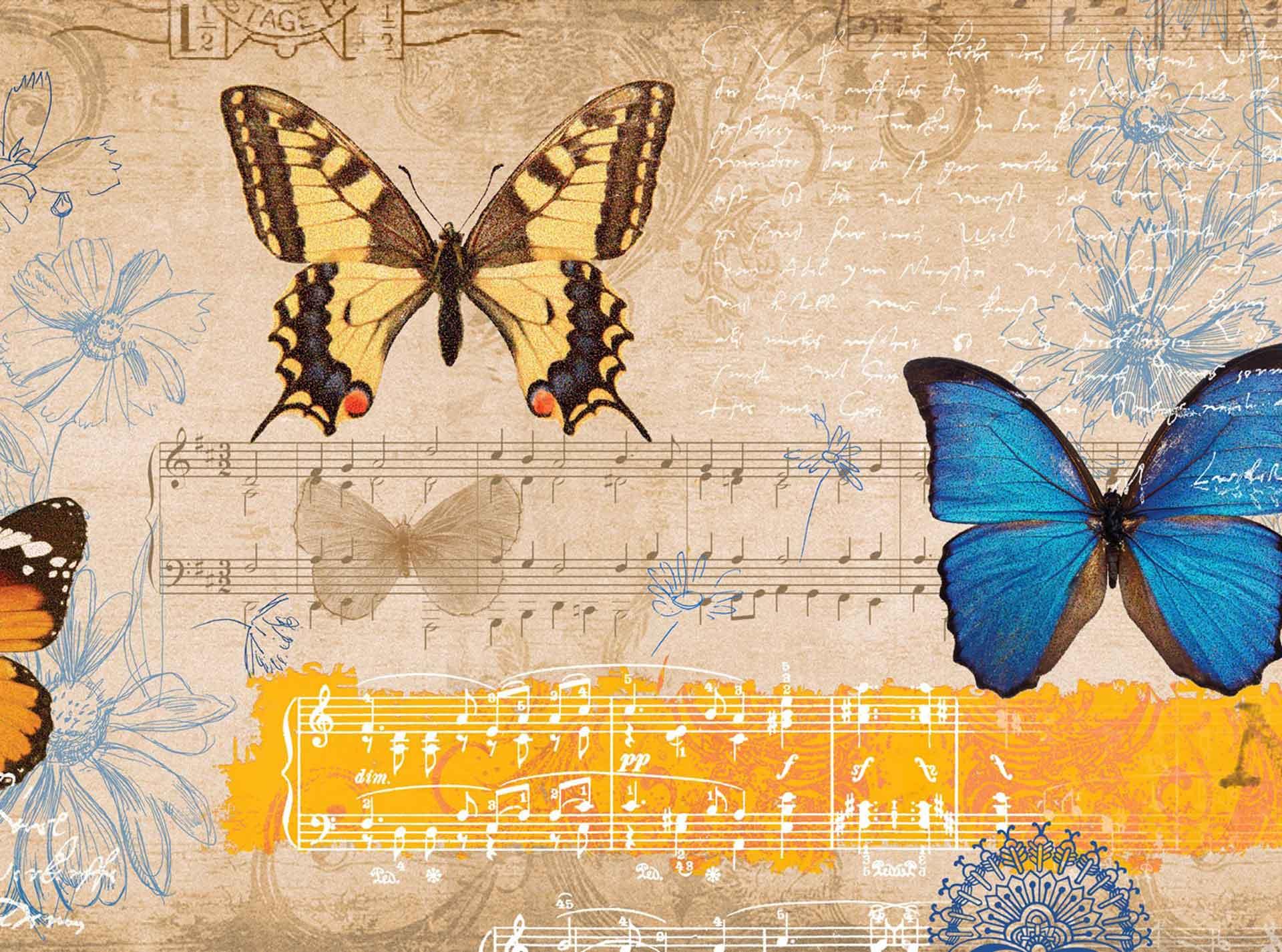 Power of Music - Vanya Erickson